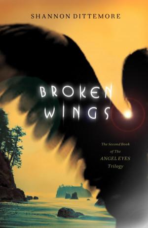 Broken-Wings_cover1-e1339624090494.jpg