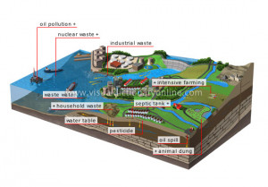 com/articles/effects-of-water-pollution.html http://library.thinkquest ...