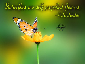 Butterflies are self propelled flowers ~ Flowers Quote