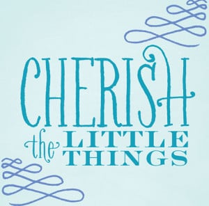 Quote of the Day {Cherish the little Things}