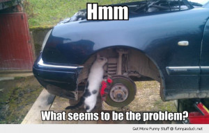 cat under car lolcat mechanic seems problem animal funny pics pictures ...