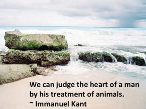 Immanuel Kant: Dogs Lovers 3, Immanuel Kant, Animal Everywhere, Animal ...