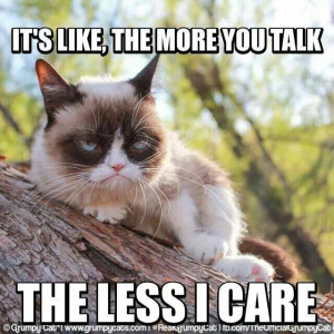 Grumpy cat and no response. Humor. A recovery from narcissistic ...