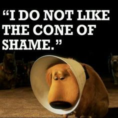 Love Doug from up (: More