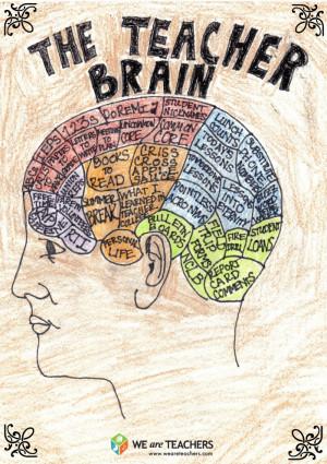 What's Really Going On Inside the Teacher Brain