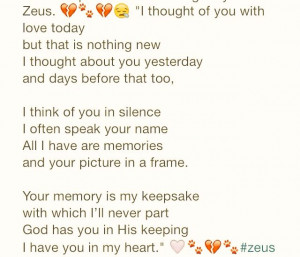 miss my dog! Zeus