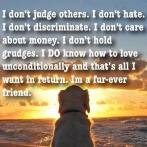 Don't Judge Others I Don't Hate - Animal Quote