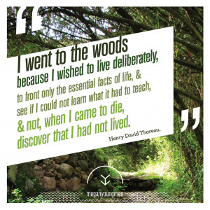 Quotes From into the Woods