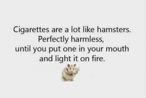 Cigarette Are A Lot Like Hamsters Perfectly Harmless