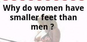 Women Bashing Jokes