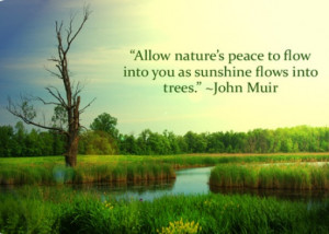 Allow nature's peace to flow into you as sunshine flows into trees.