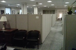 ... > US Domestic Politics > House Losers Get Cubicles in the Basement