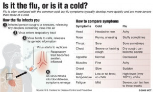 cold flu difference