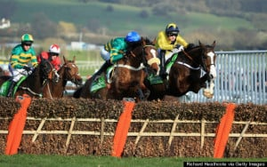 Ruby Walsh Horse Death Quotes At Cheltenham Festival Attacked For ...