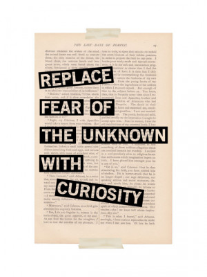 inspirational quote dictionary art Replace FEAR of the UNKNOWN with ...