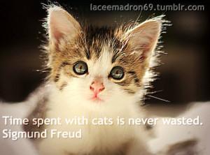 cat quotes | Tumblr
