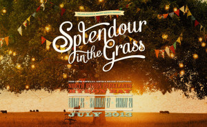 Splendour in the Grass, North Byron Parklands, July 2013
