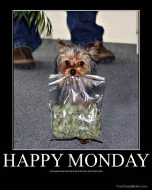 Happy Monday or freeday!!!!!