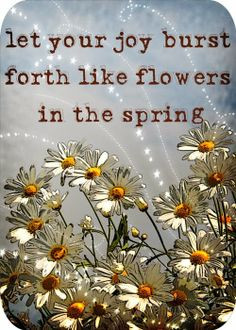 ... in the spring inspirational quotes more life quotes quotes happy