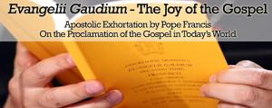 688 x 276 · 157 kB · jpeg, Bishop s appeal marriage week evangelii ...