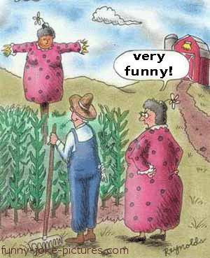 Very Funny Wife Farm Scarecrow Cartoon Joke Image