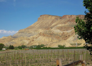 Colorado Wine Country Bike & Hike