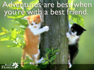 Adventures are best when you're with a best friend.