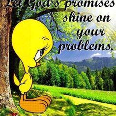 Tweety Birds, Amen, Shinee Fathers, Faith, Fathers Shinee, Bible ...