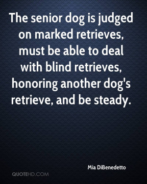 Senior Dogs Quotes The senior dog is judged on