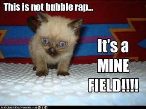Funny Kitten On Bubble Wrap