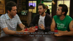 charlie kelly quotes bird law