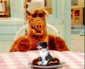 ALF, however, might have been able to get some actual pussy too if he ...