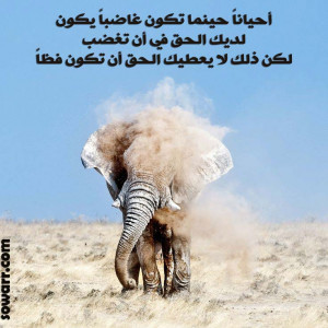 Arabic quotes about being angry