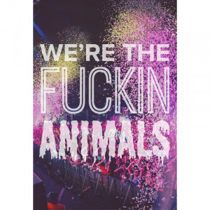 rave love quotes