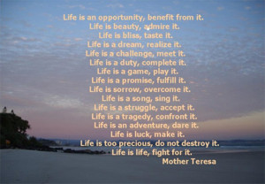 Motivational Sayings Life is an Opportunity