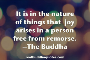 """... of things that joy arises in a person free from remorse."""" The Buddha"""