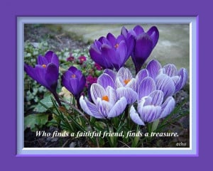 most beautiful flower quotes of friendship day