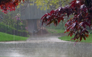 What to Consider When Looking for a Place This Rainy Season