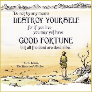 Wisdom from Narnia: