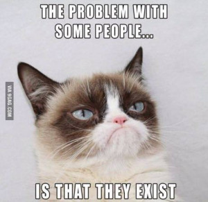 Problem with some people... - Grumpy Cat Picture