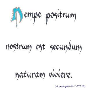 Latin Quotes Tattoos Strength