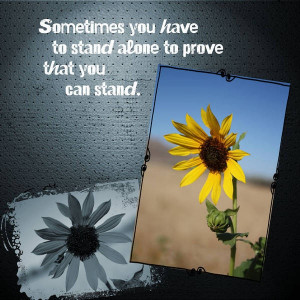 Stand alone quote