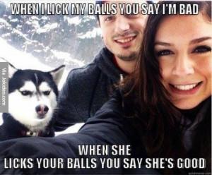 Lick my balls – dog meme