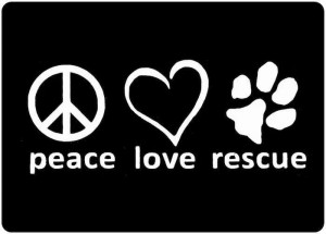 Rescue... #doglovers #quotes