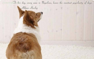 Thou Art Wise And Valiant As A Dog