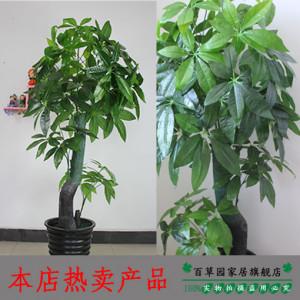 tree artificial flower French silk flower derlook plants bonsai plants