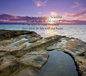 The Best and most Beautiful Things in the World : Beauty Quote