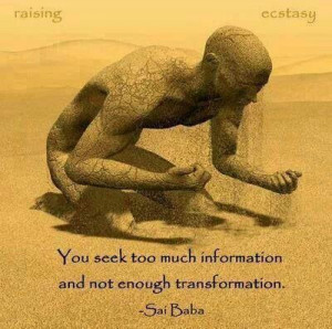 Seek transformation, Not information