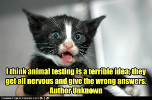 Quotes For Animal Testing ~ Peta and animal testing on Pinterest | 19 ...
