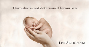 Pro-Life Quotes, Facts, and Arguments in Visual Graphics